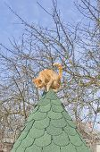 Rufous cheerful cat on a green roof in a rural landscape poster