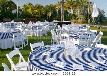 Evening Dinner Reception