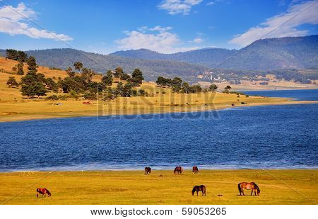 Pastoral Bulgarian Landscape