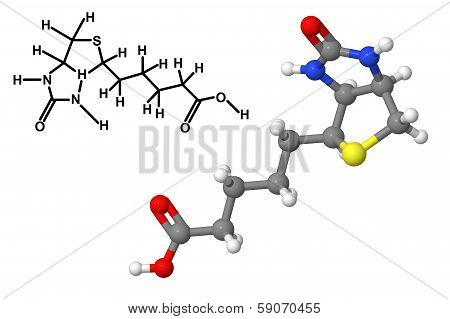 Vitamin B7 (Biotin vitamin H coenzyme R) molecule with chemical formula isolated on white background poster