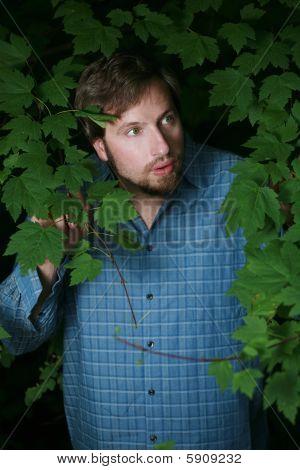 Surprised Man Looking Through Foliage