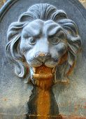 An old iron fountain with lion's head in relief against flat back. The iron has become pitted with age and rusted where the water flows out of the lion's mouth. poster