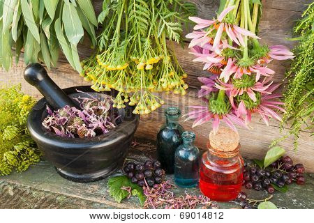 Bunches Of Healing Herbs On Wooden Wall, Mortar With Dried Plants And Glass Bottles