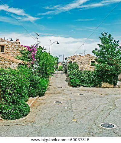 San Pantaleo Street
