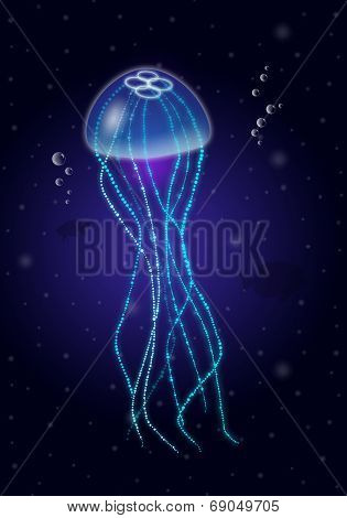 Jellyfish Into The Blue