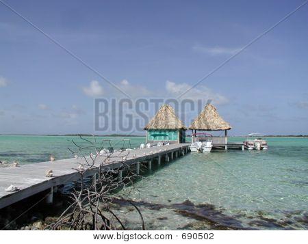 Welcoming Dock