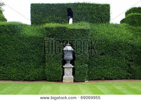 sculptured urn and hedge