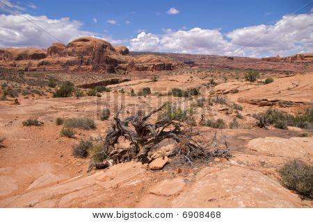 Stunning landscape, Corona Arch Trail