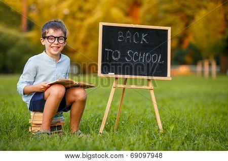 Cute little schoolboy reading book
