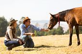 cowboy and cowgirl playing with foal in the ranch poster