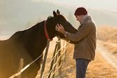 caring young man touching his horses in winter morning poster