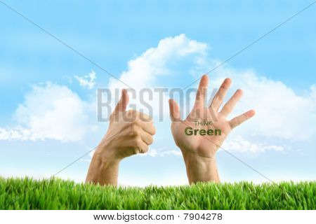 Hands With Eco Friendly Sign In The Grass