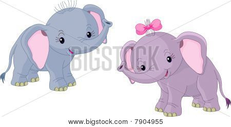 Two Babies elephants