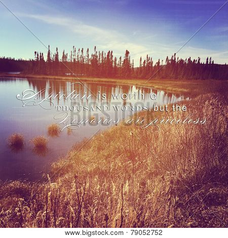 Instagram Of Peaceful Lake Surrounded By Grass And Trees With Quote