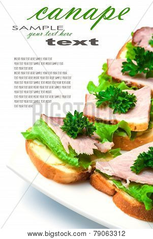 Closeup of delicious ham and salad canapes sandwiches with parsley lying on a white plate with easy removable text. Vertical composition.