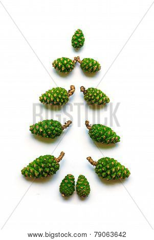 Green fir cones are laid out in the form of a Christmas tree.