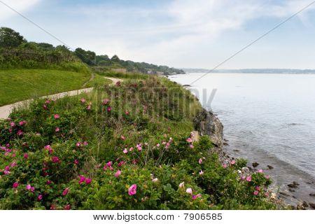 Newport Rhode Island Shoreline
