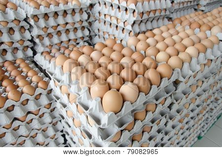 Eggs In The Package Of Gray Paper
