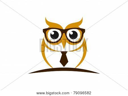 owl education vector logo design