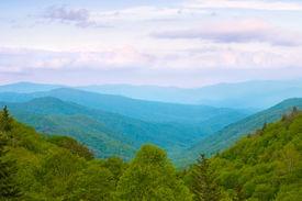 Smoky Mountains Vista