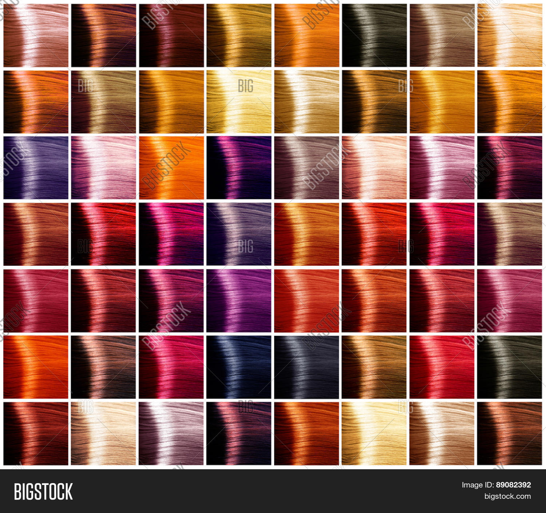 Hair Colors Palette Hair Colours Image Photo Bigstock