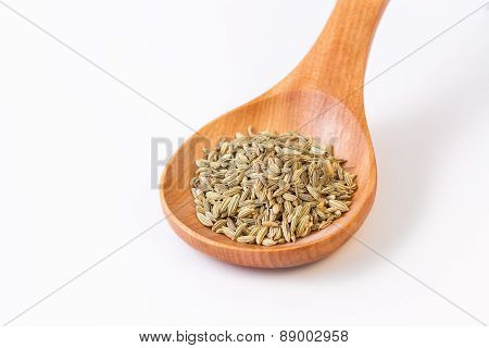 Fennel Seeds In A Wooden Spoon - Closeup