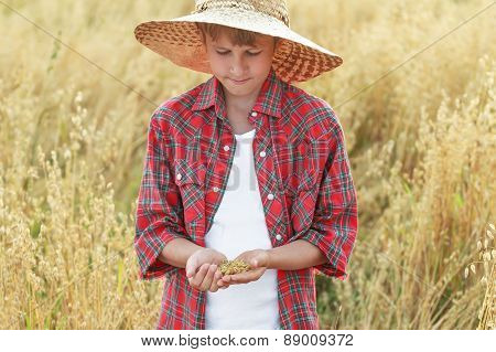Portrait Of Young Farmer Is Checking Oat Or Avena Sativa Seeds In Cupped Palms