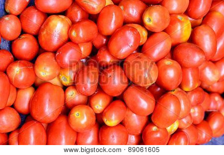 Vegetable - Tomato