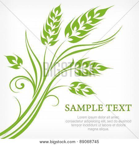 Stylized Ears Of Wheat In Green