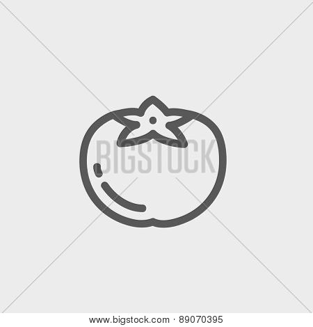 Tomato icon thin line for web and mobile, modern minimalistic flat design. Vector dark grey icon on light grey background. poster