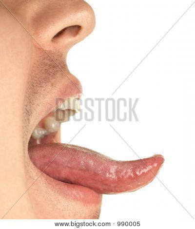 Mouth And Tongue