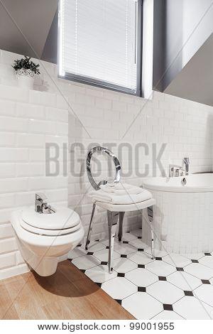 Luxury And Elegant Toilet