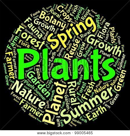 Plants Word Means Herbage Text And Botanical