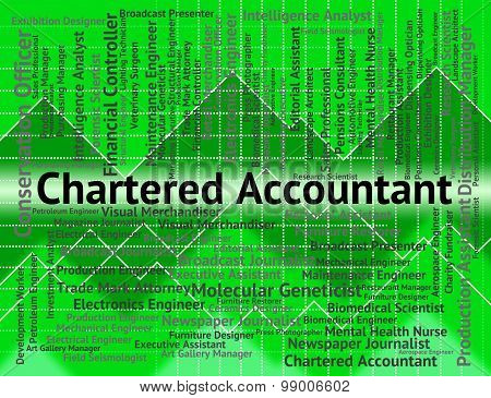 Chartered Accountant Indicates Balancing The Books And Licensed