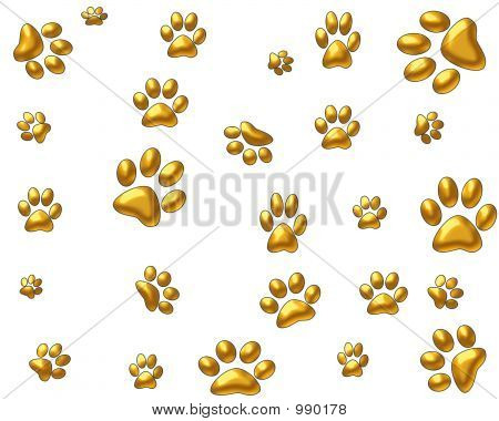 Golden Paws