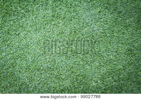 Football or soccer grass field for background