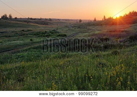 Green Grassy Hills With Small Distant Trees In Summer Sunrise