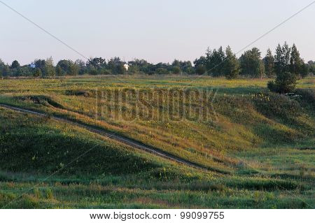 Green Hills With Small Trees In Summer Sunrise