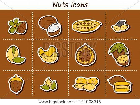 Set of cartoon hand drawn stickers on nuts theme: hazelnut, pumpkin and sunflower seeds, peanut, pec