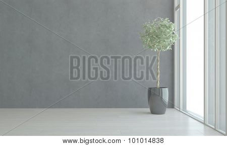 Potted House Plant in Shiny Black Pot Thriving in Empty Room Next to Bright Window in Apartment with Gray Walls. 3d Rendering.