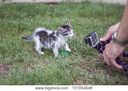 Cat Videocamera