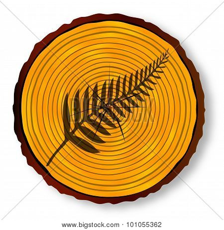 New Zealand Silver Fern On Timber Section