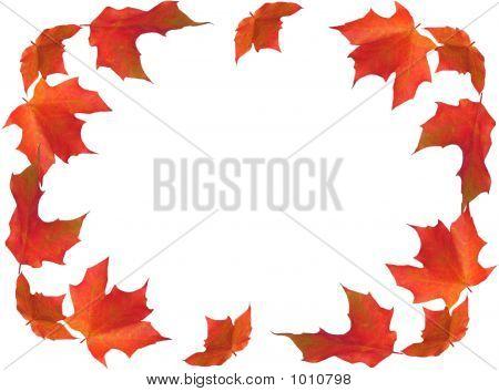 Fall Border
