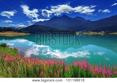 Amazing sunny day at Champferersee lake in the Swiss Alps. Silvaplana village, Switzerland, Europe. poster
