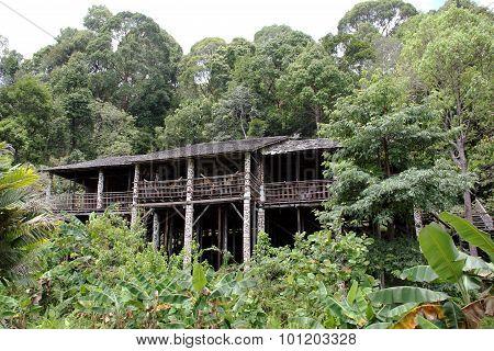 Native Dayak House Borneo