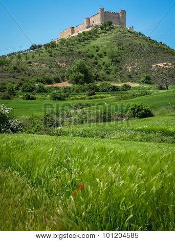 Cid Castle, Jadraque, Castilla La Mancha, Spain
