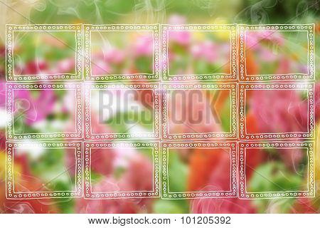 Frames On Flower Background