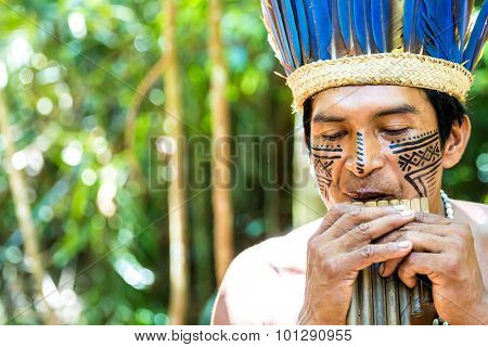 Brazilian Indian showing his ritual in Amazon