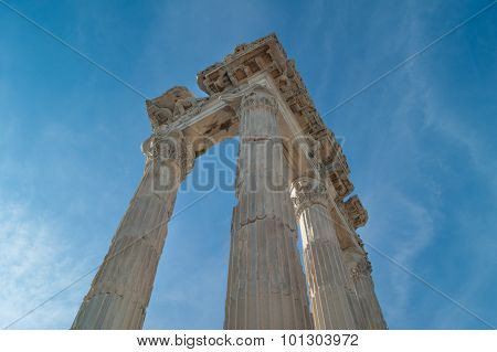 Columns Of The Temple Of Trajan