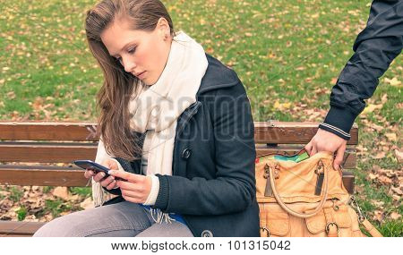 Pickpocketing From The Bag Of A Young Woman In A Park